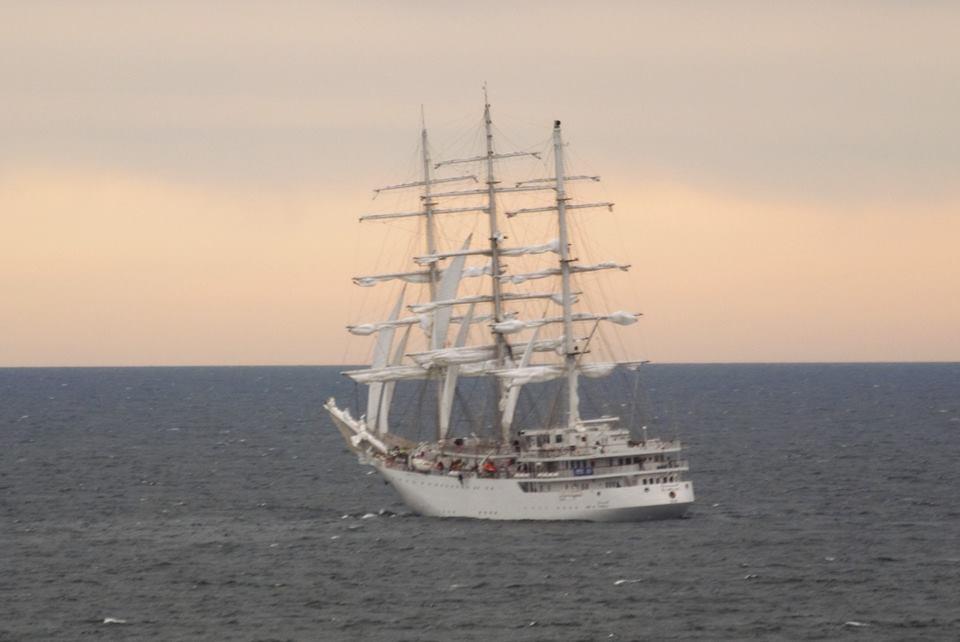 صور السفينة الشراعية الجزائرية  [ الملاح 938 ] - صفحة 8 35265802484_764bdf7142_o