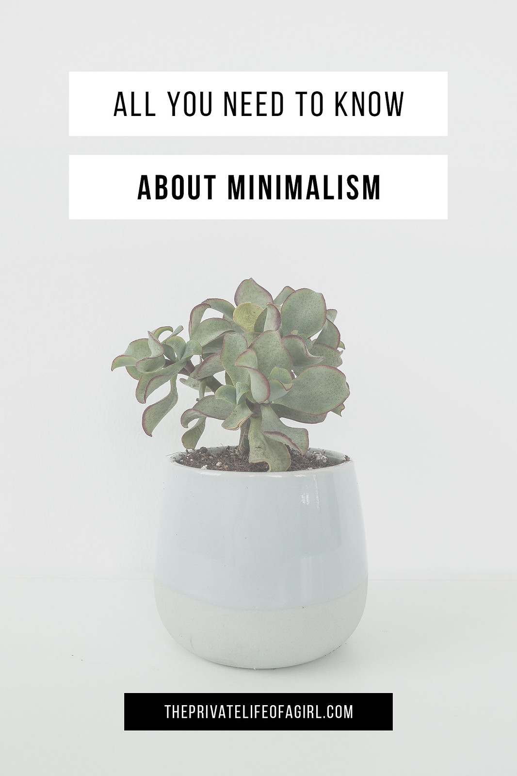 Minimalism: Questions & Answers