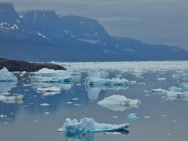 Icebergs en el sur de Groenlandia (Tasiusaq)