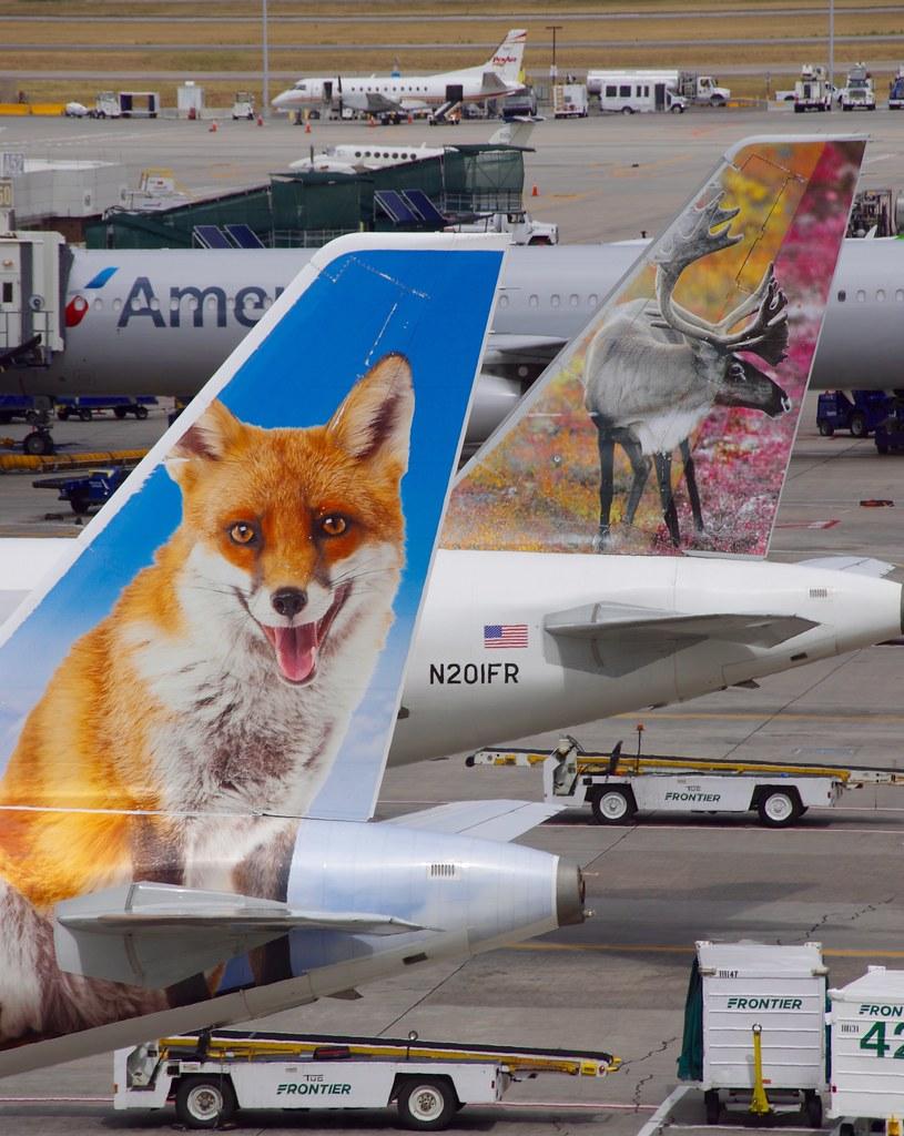 frontier 320 animal ile ilgili görsel sonucu