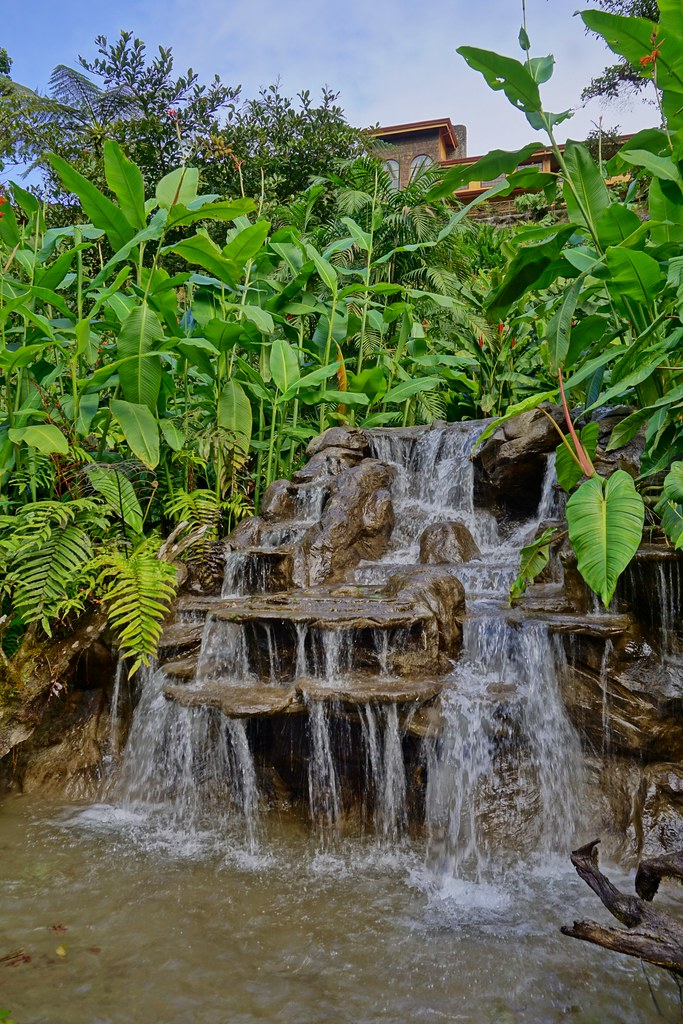 Hummingbird Garden waterfall | Karl Gercens | Flickr
