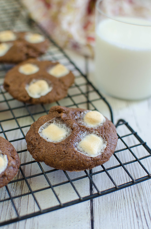 Mississippi Mud Cookies - Fake Ginger
