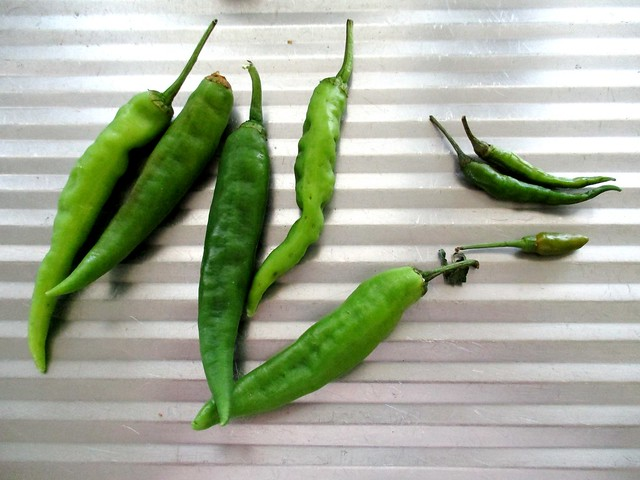 Green chilies from SIL