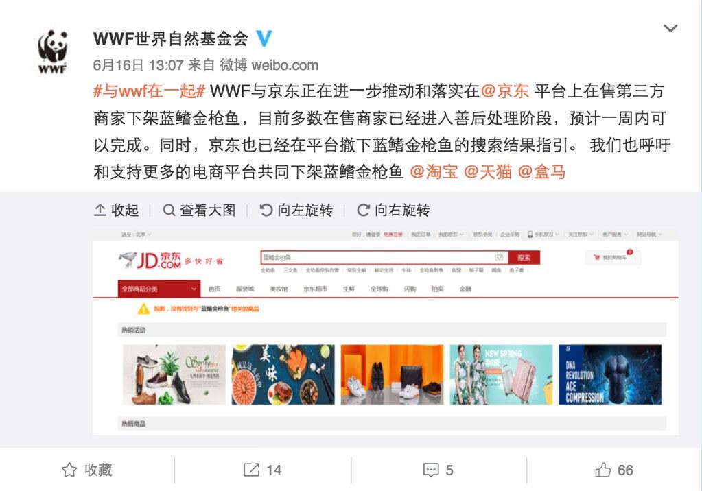 6月16日WWF於微博發布京東將下架第三方商家藍鰭金槍魚製品。圖片來源:WWF微博截圖。
