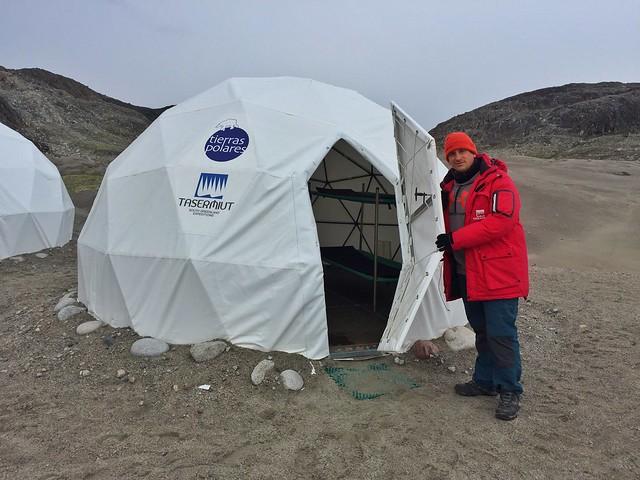 Sele en el Campamento Fletanes - Tierras Polares de Qaleraliq (Sur de Groenlandia)