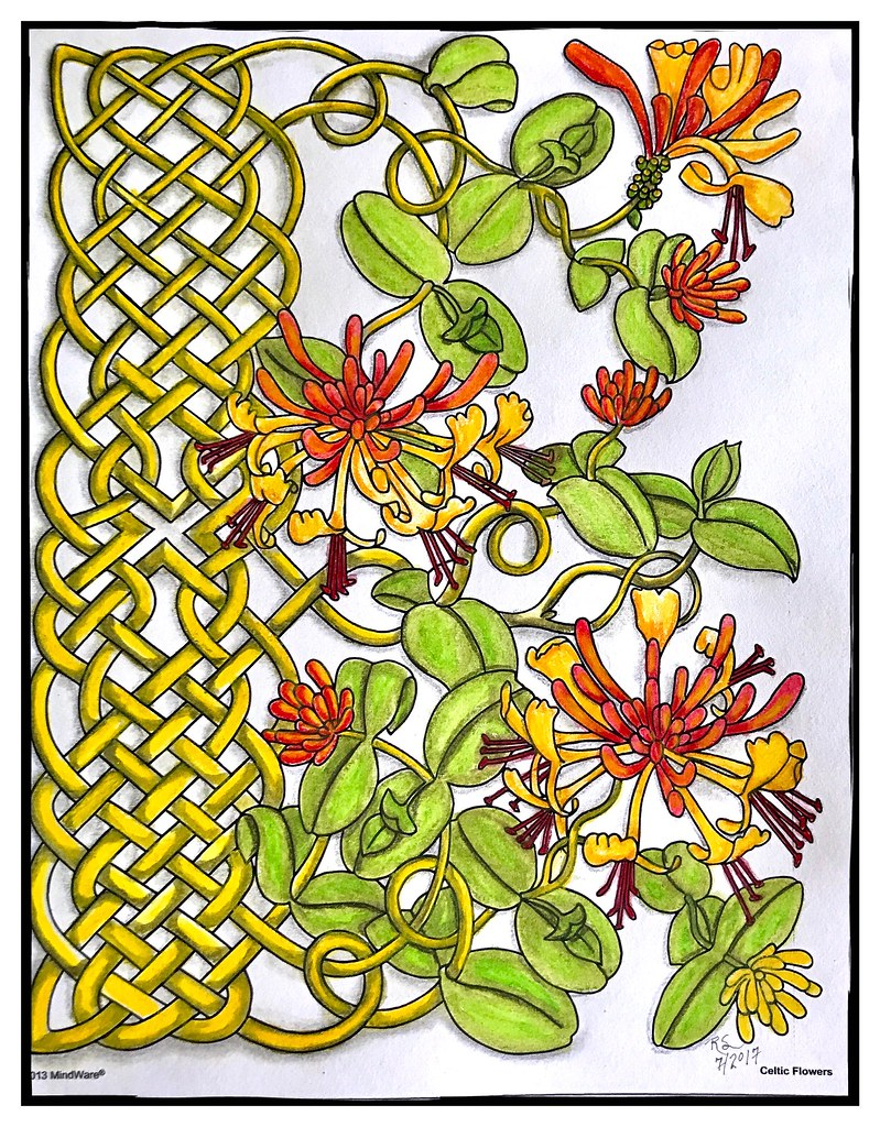 Celtic Flowers Coloring Book #4 | Colored in "|799|1024|?|4998ea480737d2ead77a2321193dc3d8|False|UNLIKELY|0.3446333408355713
