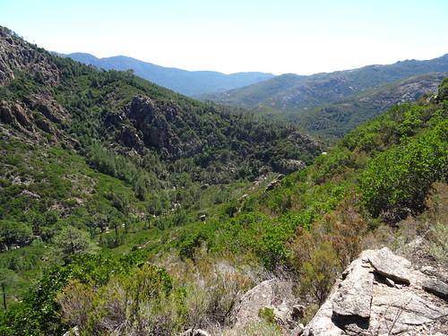 A la 2ème traversée du petit affluent du Ricu : la vallée du Ricu