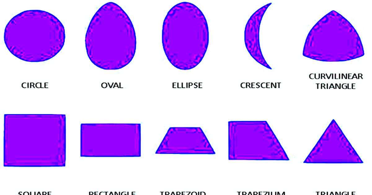 List of Geometric Shapes 5