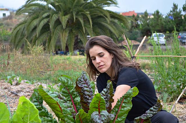 Singer and gardener, La Orotava, Tenerife