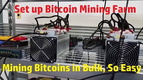 Bitcoin Qt Move Blockchain Wallet