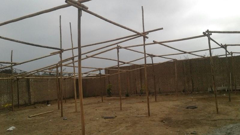 Implementan vivero forestal e hidropónico en la provincia de Chepén
