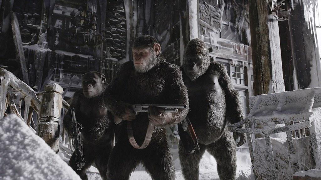 Bildresultat för war for the planet of the apes