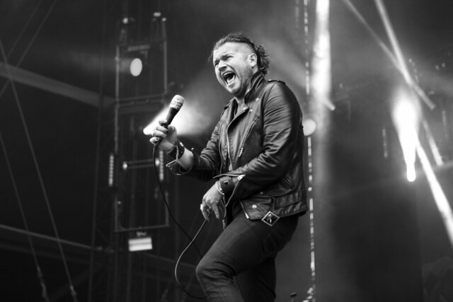 rival sons, mr malinois, malinois, monsieur malinois, didier richard, lollapalooza