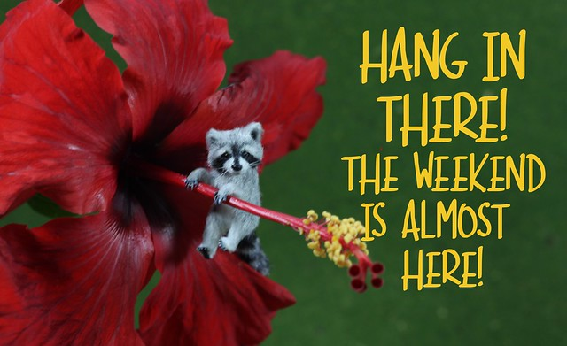 Hang in there! Its Friday