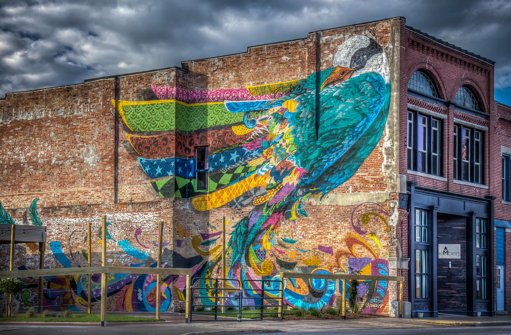 A Big Colorful Bird Rensselaer In By Cameron Moberg