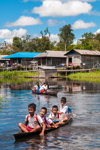 Going to school | by CIFOR
