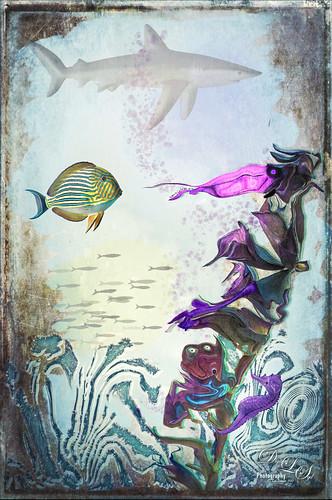 Image of My Magical Ocean