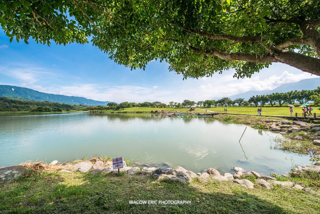 池上旅遊-大坡池風景特定區