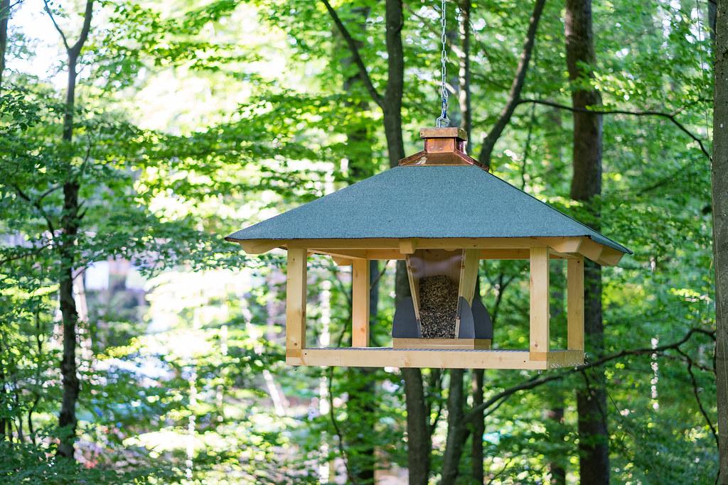 Vogelfutterhaus Mehr Informationen Www Baumwipfelpfadstei Flickr