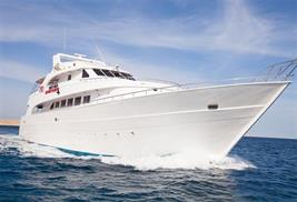 Viaje de buceo vida a bordo Mar Rojo