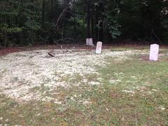 Mahan Cemetery 3