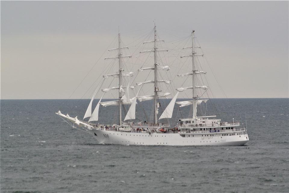 صور السفينة الشراعية الجزائرية  [ الملاح 938 ] - صفحة 8 36064221566_6601902d34_o
