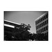 HAMBURG_08-07-17_P30_10_flckr