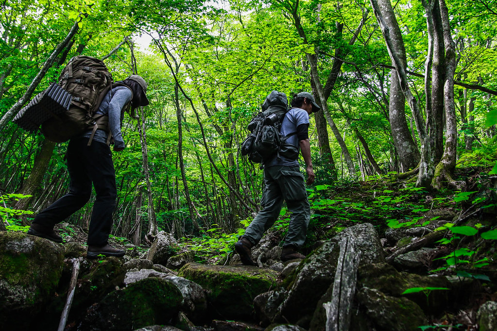 Field Report: Mt. Amagoi 35945875591_9bf0d80c32_b