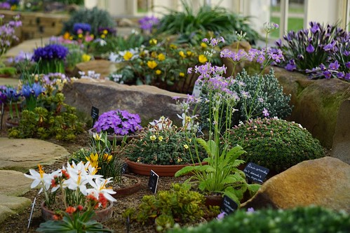 The Alpine House - RHS Garden Harlow Carr, Harrogate, North Yorkshire | by Glen Bowman