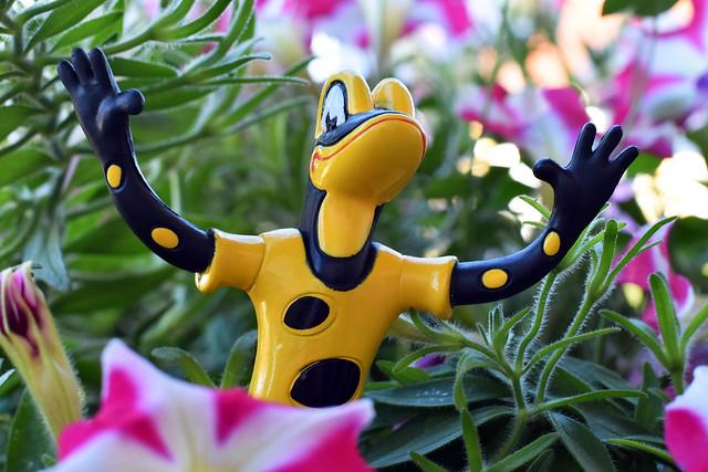 Lurchi und seine Freunde ... Salamander lebe hoch ... Feuersalamander ... Foto: Brigitte Stolle