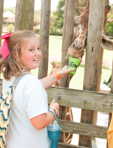 july 22. montgomery zoo_0007_edited-1 | by natalie @ our old southern house