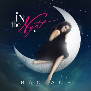 Bảo Anh – In The Night – iTunes AAC M4A – Single