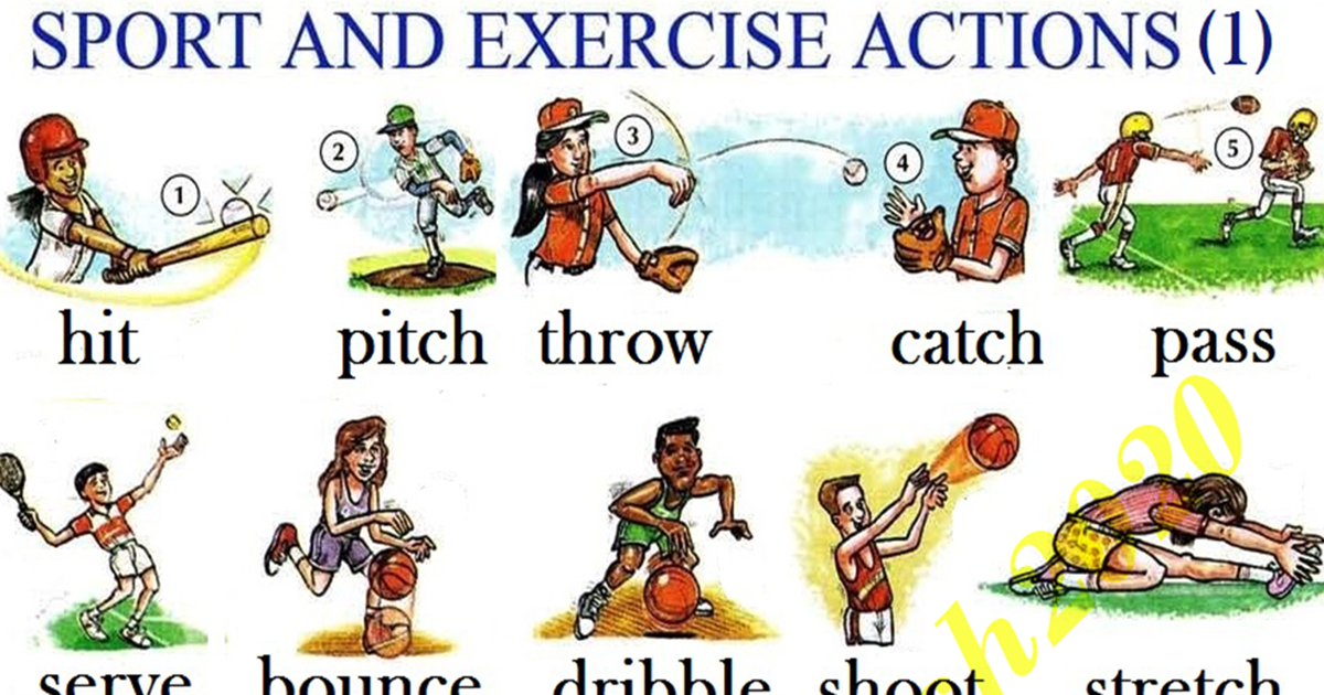 Action Verbs in English: Sport & Exercise 5