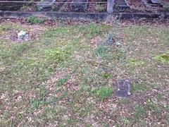 Mahan Cemetery 1