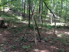 Elaborate Campsite 2