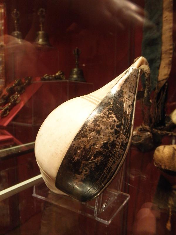 Shankha Turbinella pyrum shell