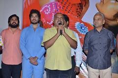 Gulf Movie Audio Launch Stills