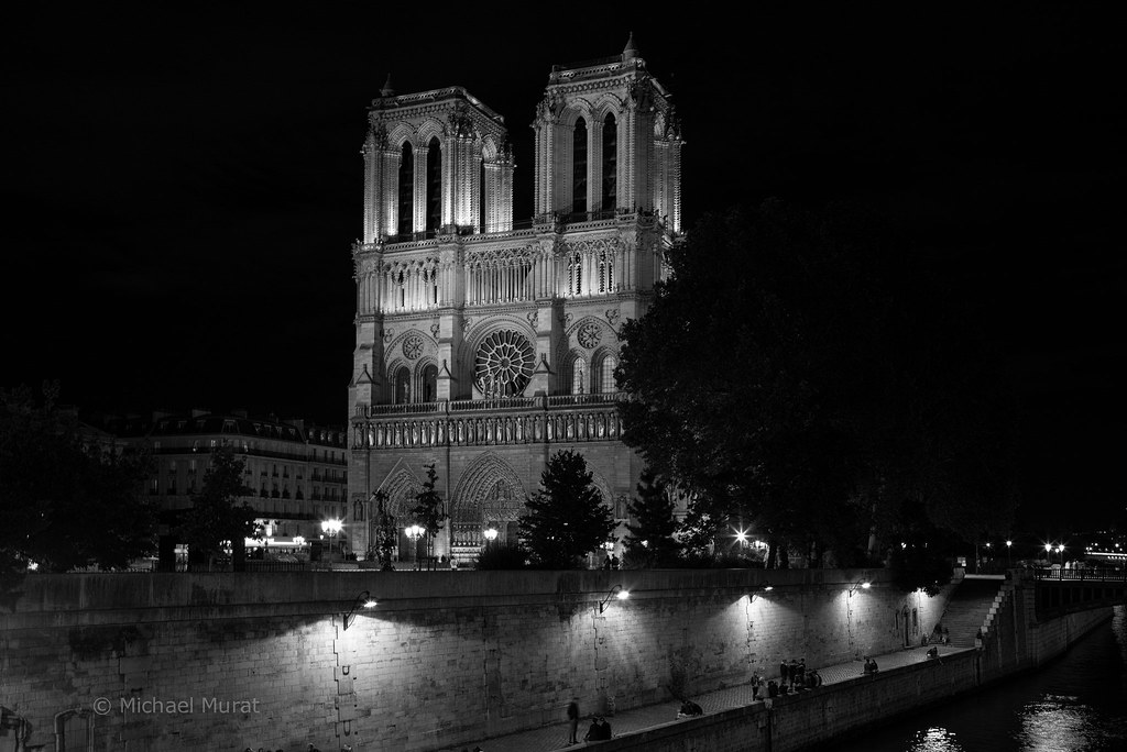 Goodnight paris by michael mu