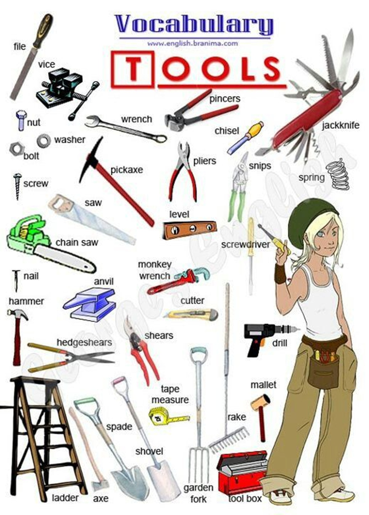 Vocabulary: Tools 3