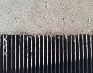 IMG_0540grate (Large) | by Intheswamp
