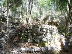 Confluence Carciara/Velacu : les caseddi d'Aragali (débarrassés de leur maquis)