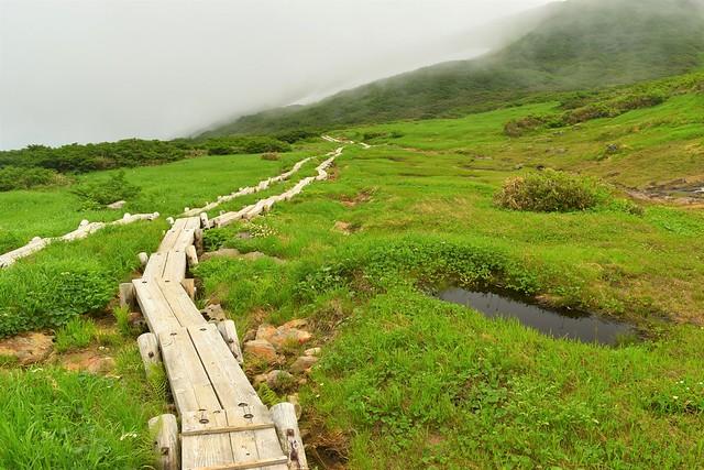 牛首下の大湿原と木道