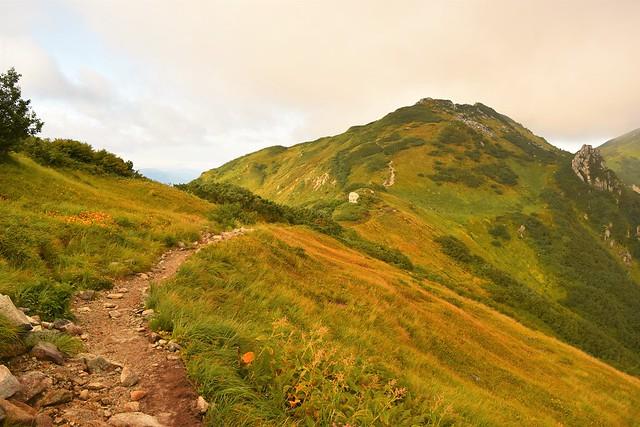中大日岳の稜線と草紅葉