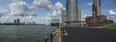 Rotterdam, Panorama