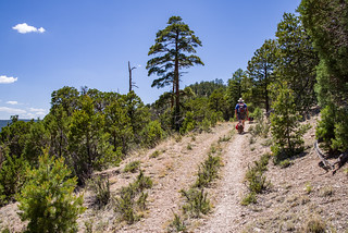 Slate Mountain Trail | by Coconino National Forest