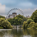 London Eye from St. James's Park