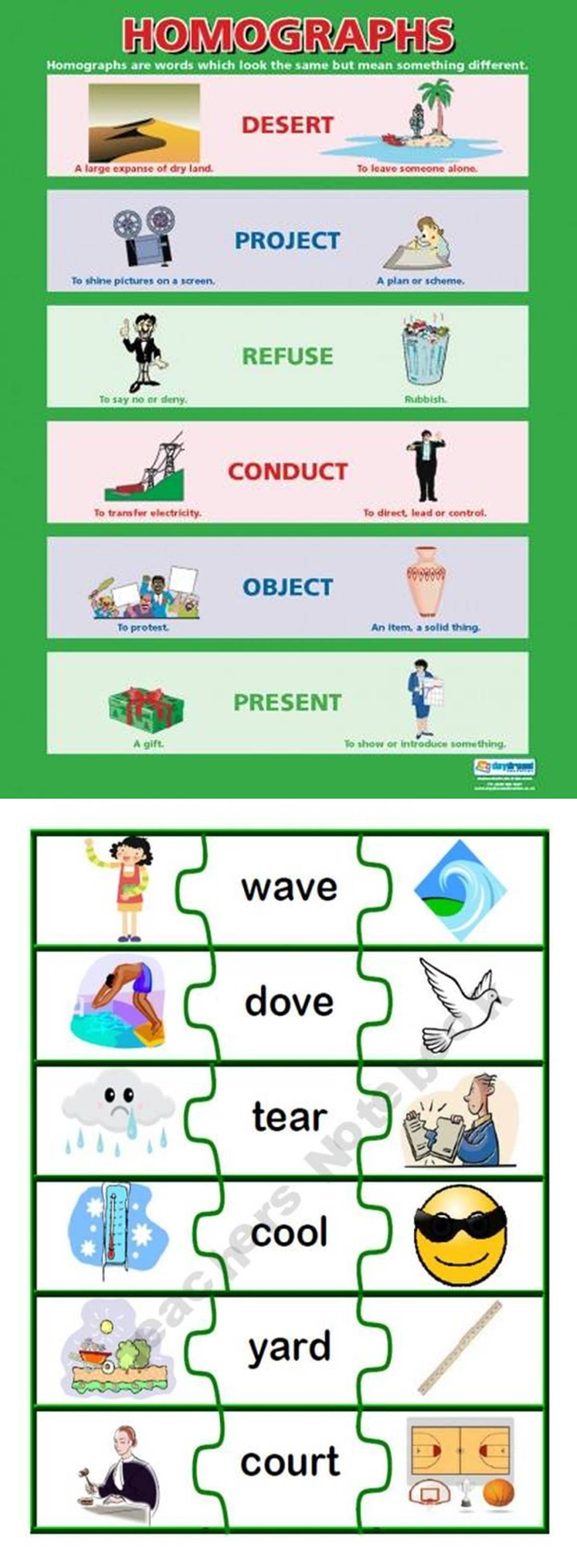Common Homographs in English 3