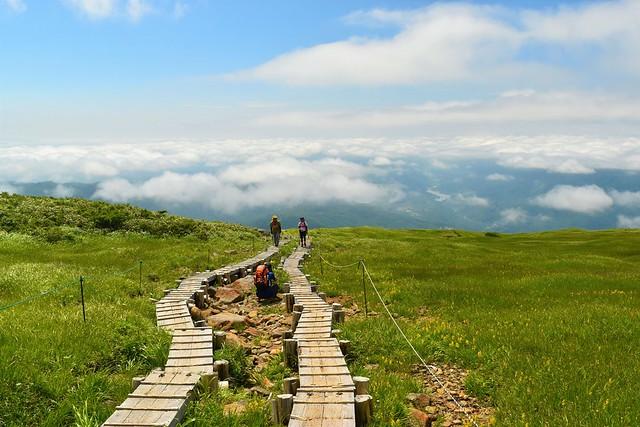 雲海の姥ヶ岳