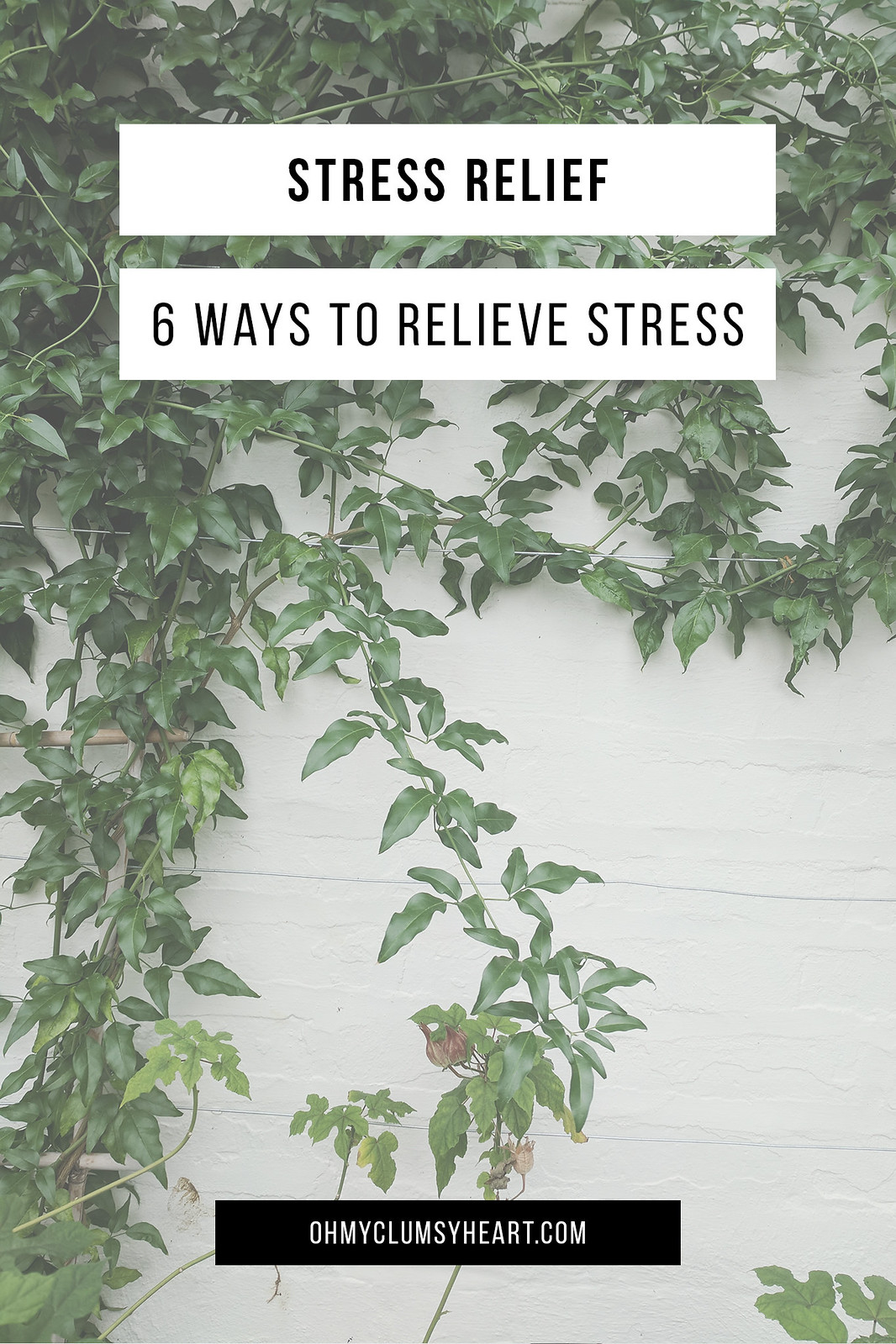 Stress Relief: 6 Ways To Destress