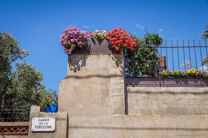 Calle de la Purísima en el barrio de Horta
